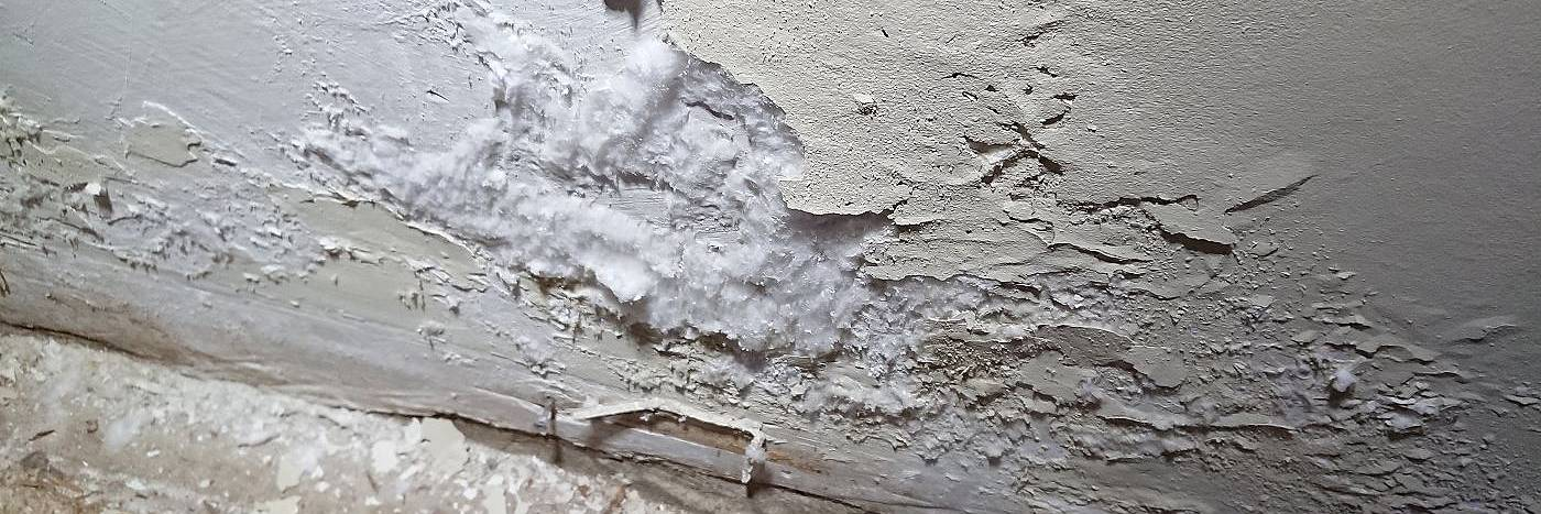 lime plaster - a partial solution to rising damp