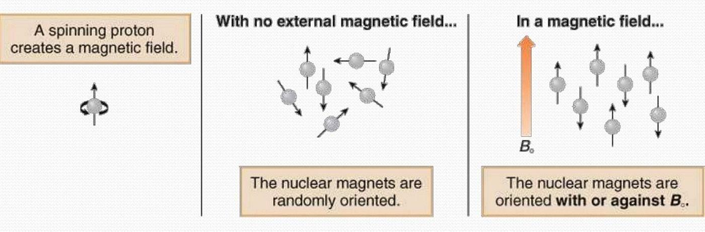 Spinnig proton
