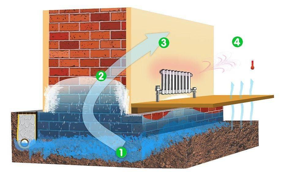 4 areas of rising damp