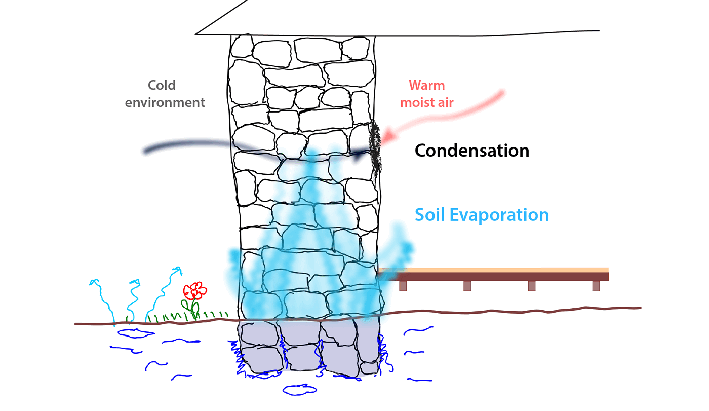 Condensation vs Rising Damp