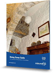 Rising Damp Guide